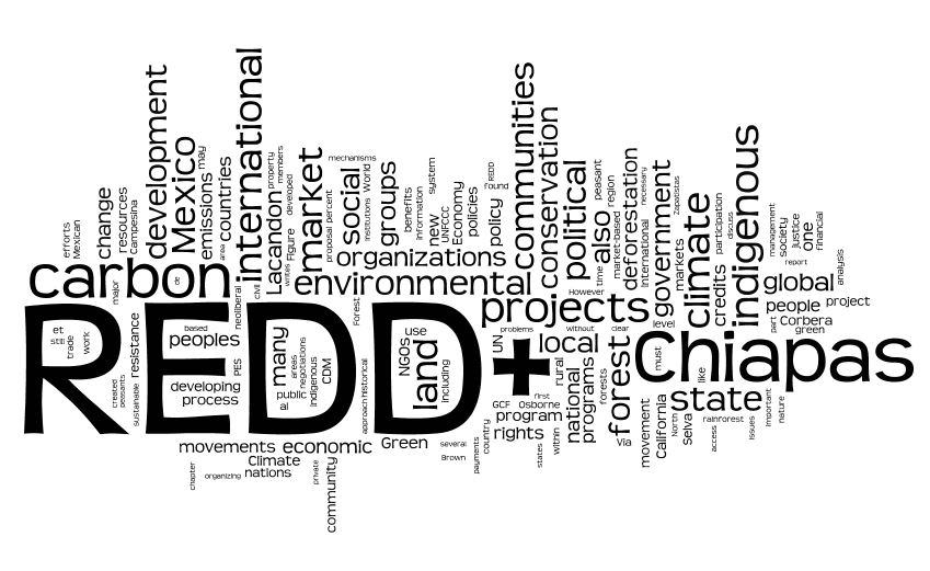 REDD+ Thesis Now Online